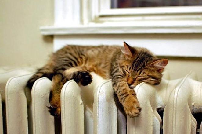 Ссегодняшнего дня вГродно начинается отключение отопления