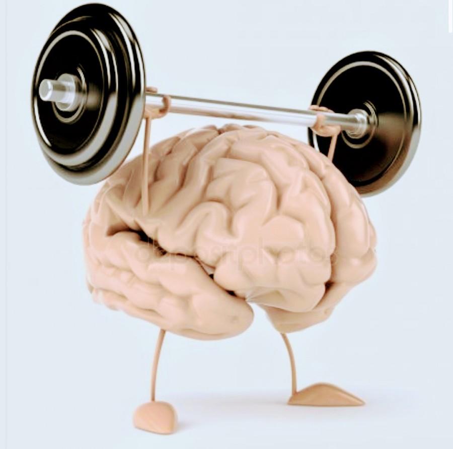 кружках белгороде, политические картинки фитнес для мозга начальник