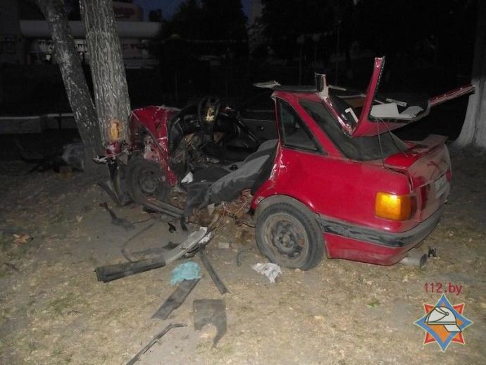 ВМозыре автомобиль въехал вдерево: шофёр живой, пассажирка погибла