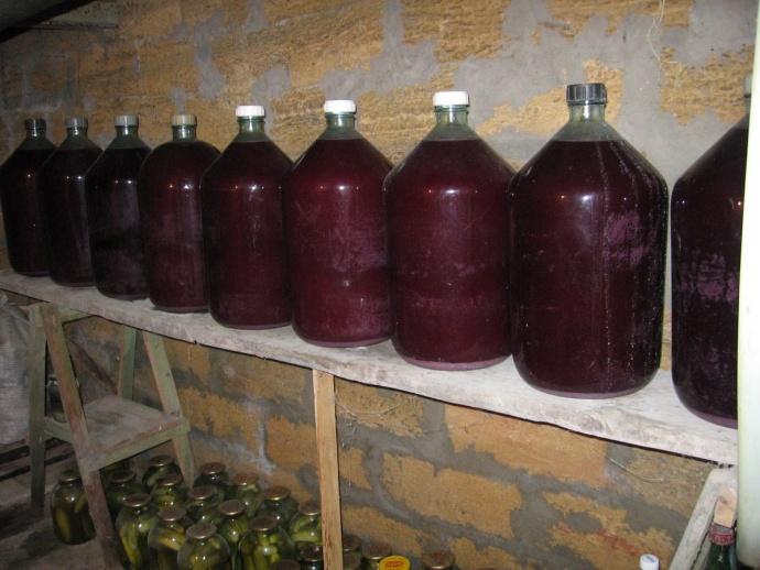 Изготовления сухого вина из винограда в домашних условиях